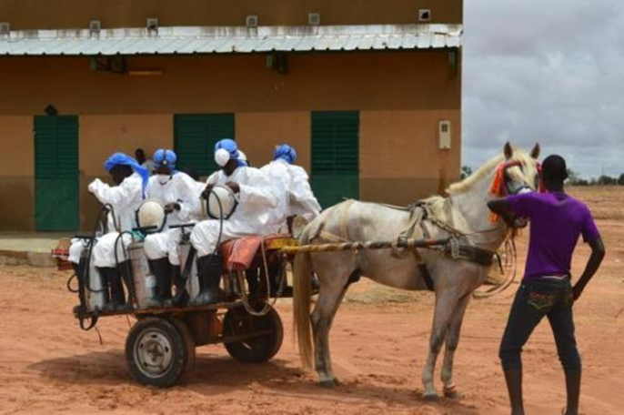 The PMI AIRS Project in Senegal scaled up IRS at a reduced cost with the help of community involvement in Malem Hoddar District. The community donated horses and carts to transport spray operators. Photo: PMI AIRS Senegal
